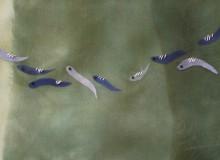 hand-dyed silk organzas